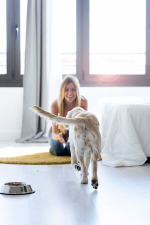 Shot of pretty young woman playing with her dog while sitting on the floor at home. Zdjęcie Seryjne