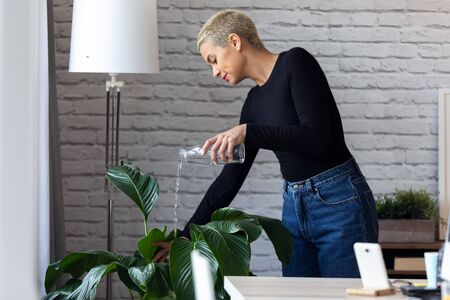 Shot of modern young entrepreneur woman watering plants in the office.