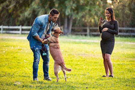 Shot of beautiful young pregnant woman making photos with mobile phone of her husband while playing with the dog in the park. Zdjęcie Seryjne