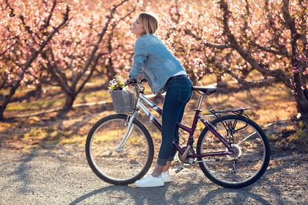 Shot of pretty young woman with a vintage bike looking the cherry blossoms on the field in springtime. Banco de Imagens