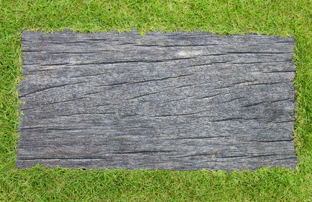 Grass and wood background frame photo