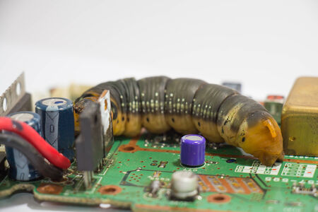 Malicious computer worm that secretly ruining your computer  photo