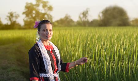 Thailand beautiful woman among green Rice ;Tribal Thailand Yoi photo