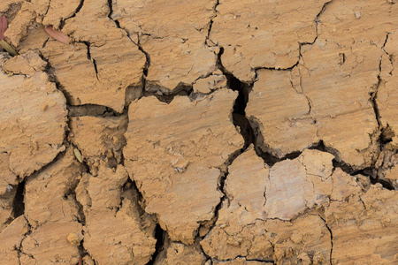 extreme heat: Clay dry in summer background. Stock Photo