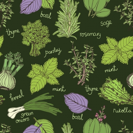 cilantro: Herbs on the dark background pattern