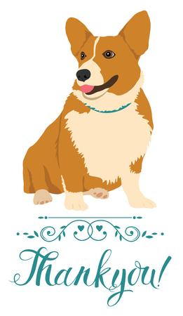 pembroke welsh corgi: Thank you card with dog Illustration