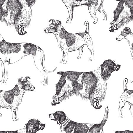 beagle puppy: Fondo Dog Vectores