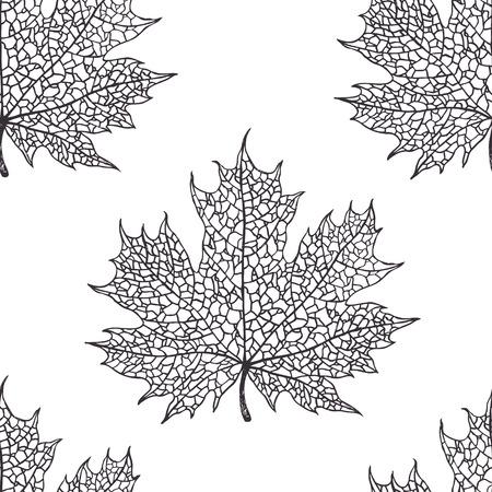 Maple leaf pattern Vector