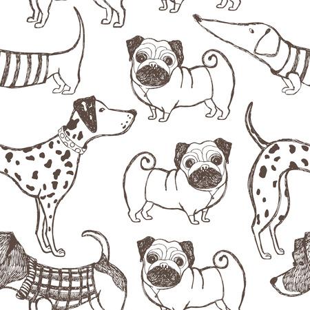 dalmata: Cani modello Vettoriali