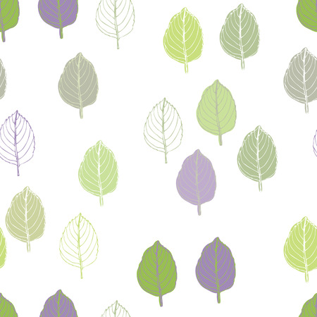 Basil pattern. Basil leaves of different colors on a white background.