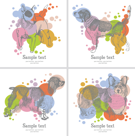 spaniel: Dogs card. Set of hand drawn dogs isolated on a colored background. Pen sketch. Vector illustration. Illustration