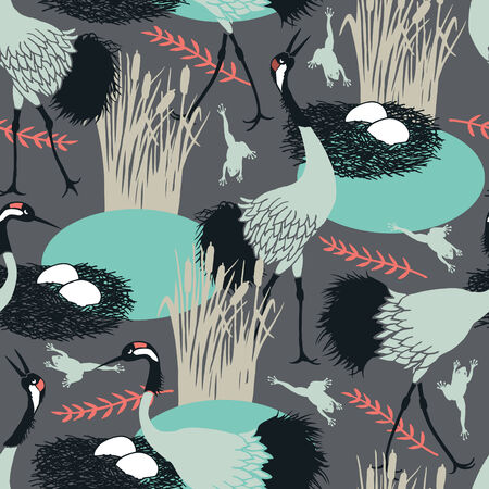 ornithology: Background with Common Cranes and nest in the marsh
