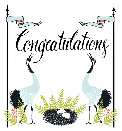 congratulations text: Congratulations card with Common Cranes, fern and nest. Calligraphy and hand drawing