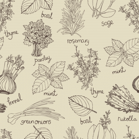 Herbs background. Hand drawing sketch Ilustração