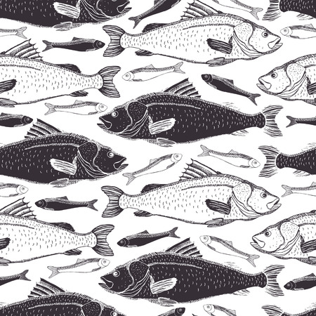carp: Fish Black and white background Illustration