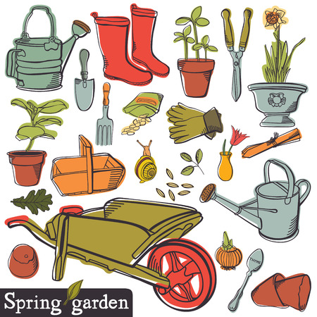 gladiolus: Spring garden, vintage tools set Illustration