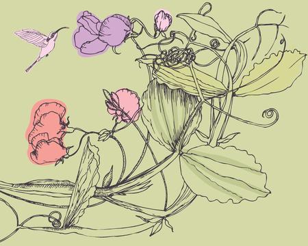 sweet pea: Sweet pea and bird, design card
