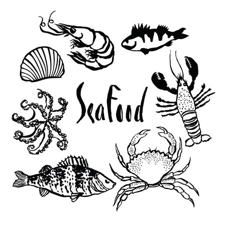 sea food: Sea food design icons set
