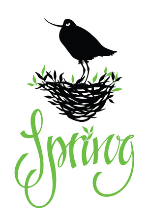 Spring lettering design card with bird on a nest