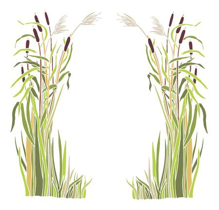 Frame of the reeds Nature frame