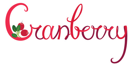cranberry illustration: Cranberry Handwriting lettering Red color Illustration