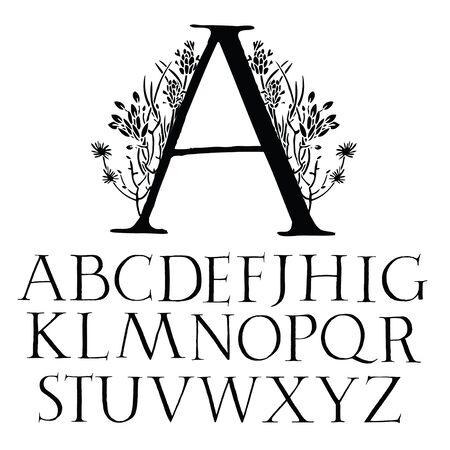 alfabet: Classical capital font Alphabet with decoration