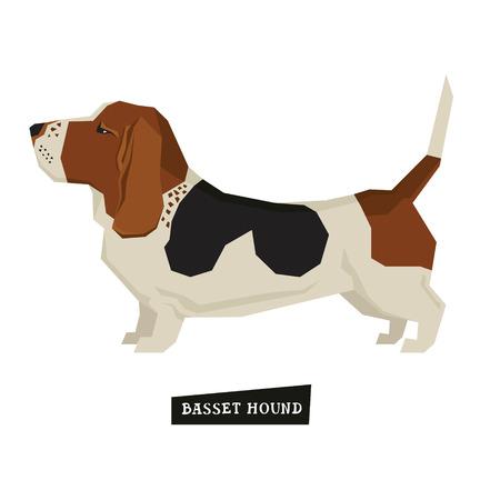style geometric: Dog collection Basset Hound Geometric style set