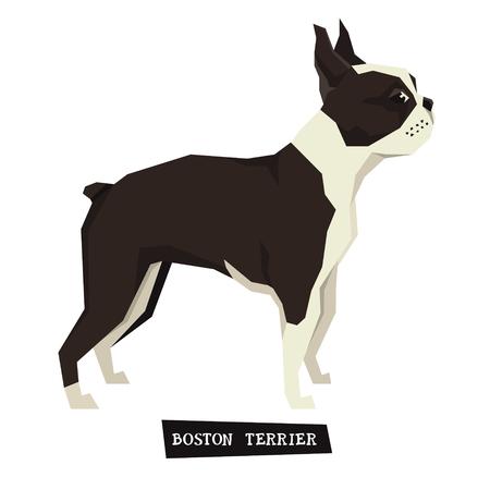 Dog collection Boston Terrier Geometric style set Illustration