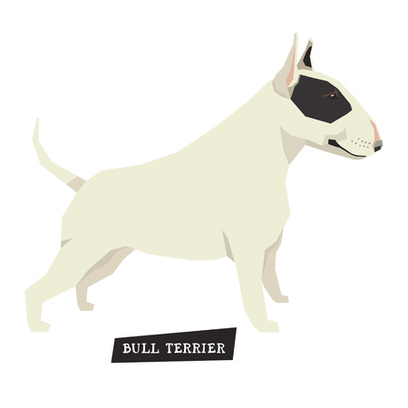 triangular eyes: Dog collection set Bull Terrier Black and White color
