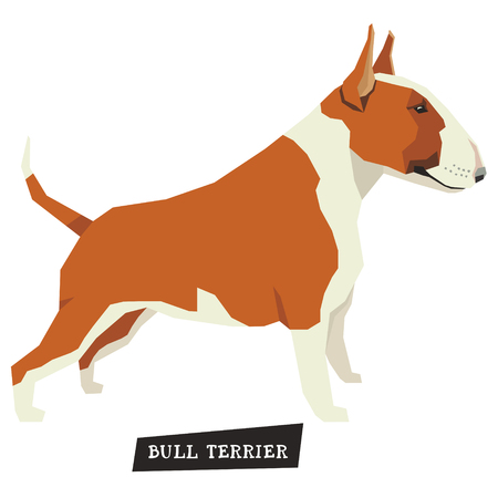 triangular eyes: Dog collection Bull Terrier Red and White color set