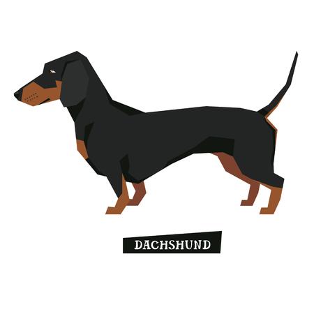dachshund: Dog collection Dachshund Geometric style