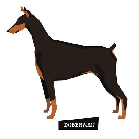 style geometric: Dog collection Doberman Geometric style set Illustration