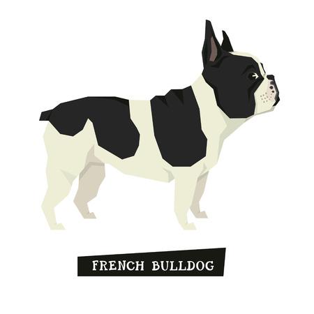 animal head: Dog collection French Bulldog Geometric style set