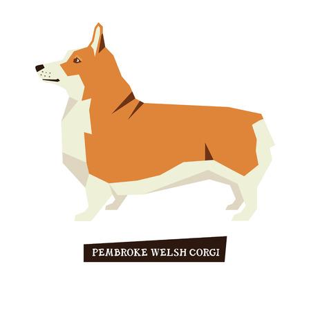 pembroke welsh corgi: Dog collection Pembroke Welsh Corgi set Illustration