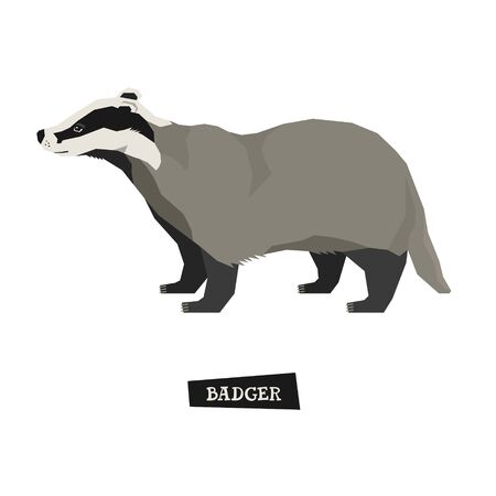 Wild animals collection Badger Geometric style set