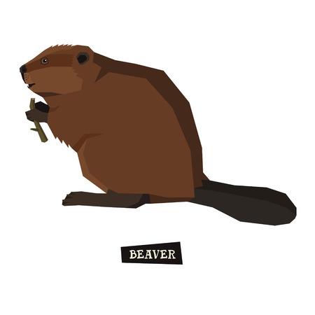 style geometric: Wild animals collection Beaver Geometric style set Illustration