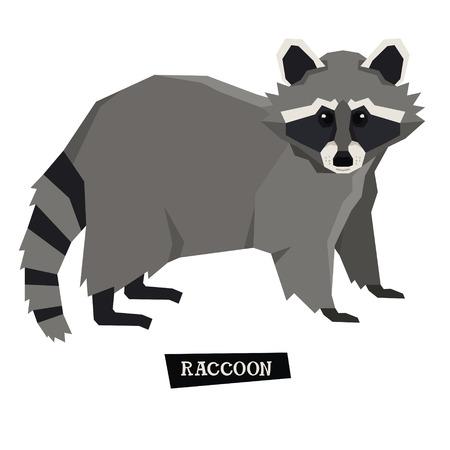 style geometric: Wild animals collection Raccoon Geometric style set