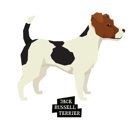 Dog collection Jack Russell terrier Geometric style set Illustration