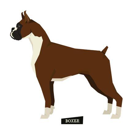 style geometric: Dog collection Boxer Geometric style set