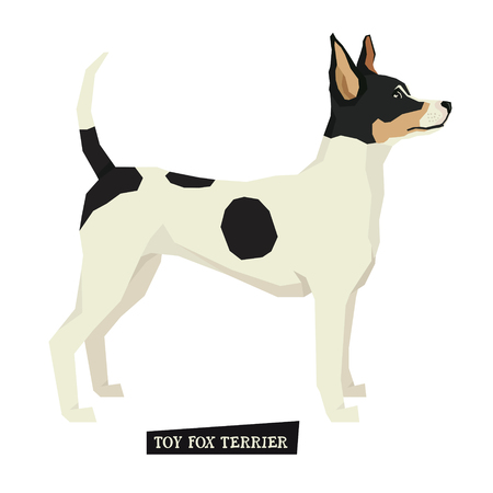 fox terrier: Dog collection Toy Fox Terrier Geometric style set