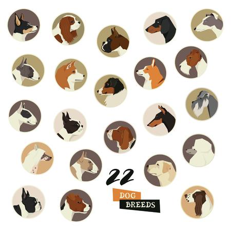 Razas de perros Vector conjunto de marcos redondos 22 icon