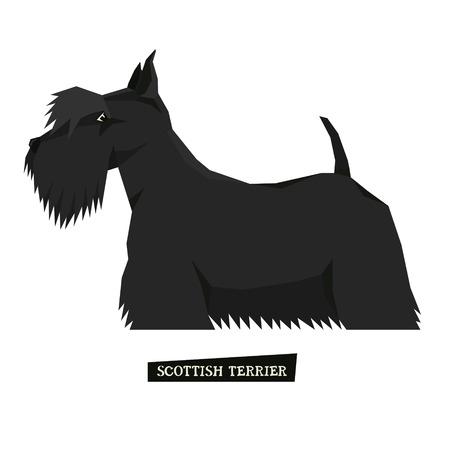scottish terrier: Dog collection Scottish Terrier Geometric style set