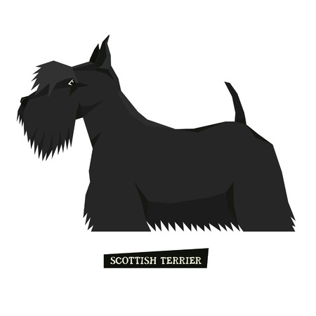Dog collection Scottish Terrier Geometric style set