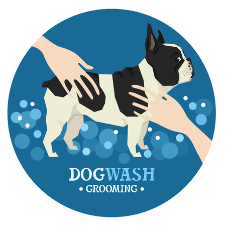 grooming: Dog washing Pet Grooming French Bulldog Design label set Illustration