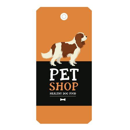 Poster Pet Shop Design label Vector Illustration Cavalier King Charles Spaniel set