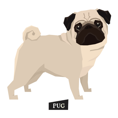 Dog collection Pug Geometric style set