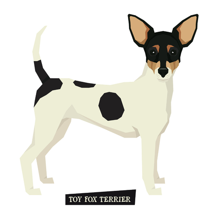 fox terrier: Dog collection Toy Fox Terrier Isolated vector set
