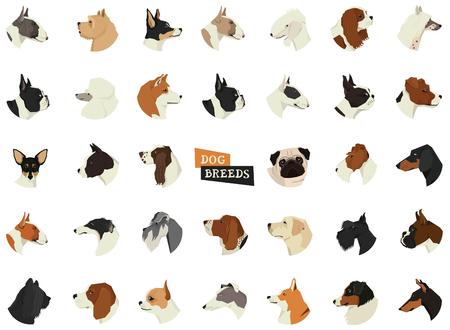 Dog breeds Avatars Isolated icons set Illustration