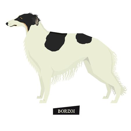 borzoi: Dog collection Borzoi Geometric style Isolated