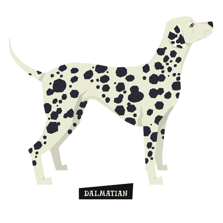 dog walking: Dog collection Dalmatian Geometric style Isolated object